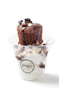 yogo 5